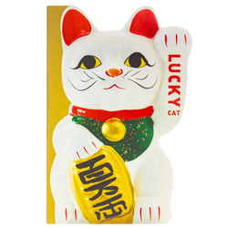 14079 lucky cat book