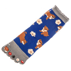 15502  japanese toe socks   shiba dog pattern   open