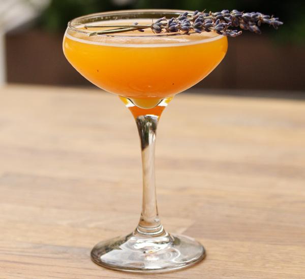 Kaede Maple cocktail