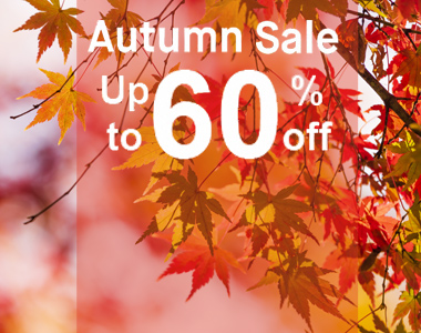 Autumn sale banner 380x300